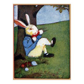 Rabbit Eating Veggies Under Tree Postcard