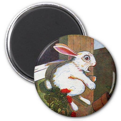 Rabbit Escapes Potting Shed Fridge Magnets