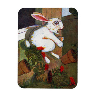 Rabbit Escapes Potting Shed Magnet