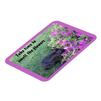 Rabbit Garden Motivational Premium Magnet