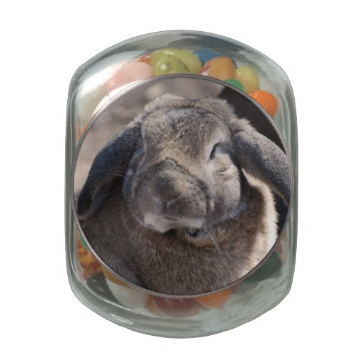 Rabbit Glass Jars