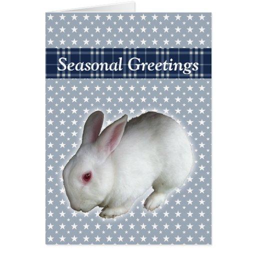 Rabbit Greeting Greeting Card