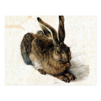 Rabbit Hare in the Snow - Durand Postcard