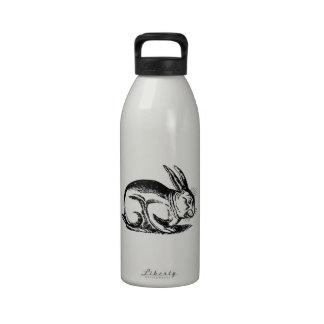 Rabbit (hare) reusable water bottle