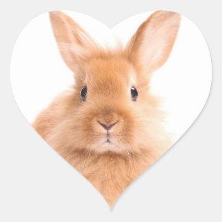 Rabbit Heart Sticker