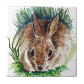 Rabbit Hiding in the Grass - Watercolor Pencil Ceramic Tile