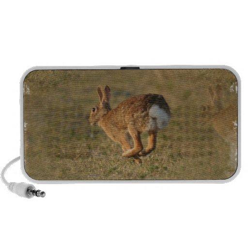 Rabbit Hopping Portable Speakers