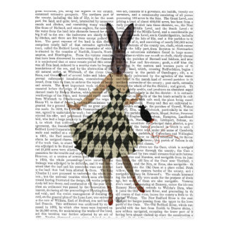 Rabbit in Black White Dress Postcard