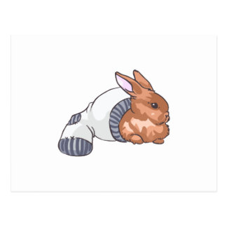 RABBIT IN SOCK POSTCARD