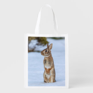 Rabbit in the snow grocery bag
