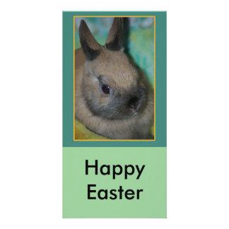 rabbit invite Happy Easter Photo Card Template