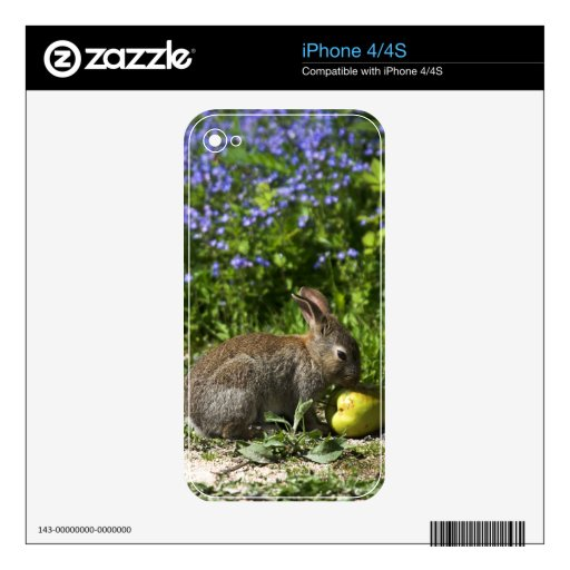Rabbit iPhone 4/4S Skin iPhone 4S Decal