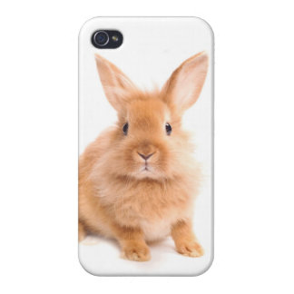 Rabbit Cases For iPhone 4