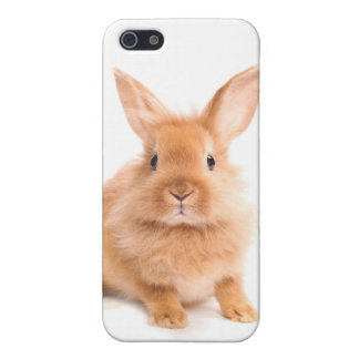 Rabbit Case For iPhone 5