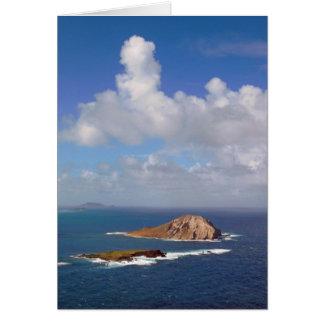 Rabbit Island Card