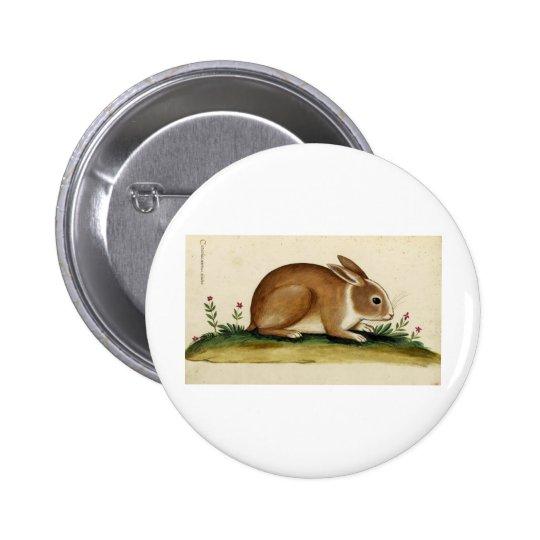 Rabbit Italiano Pinback Button