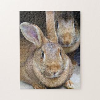 Rabbit Jigsaw Puzzle