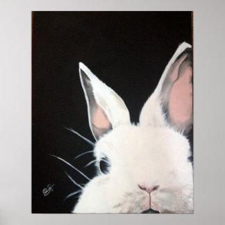 Rabbit.jpg blanco póster