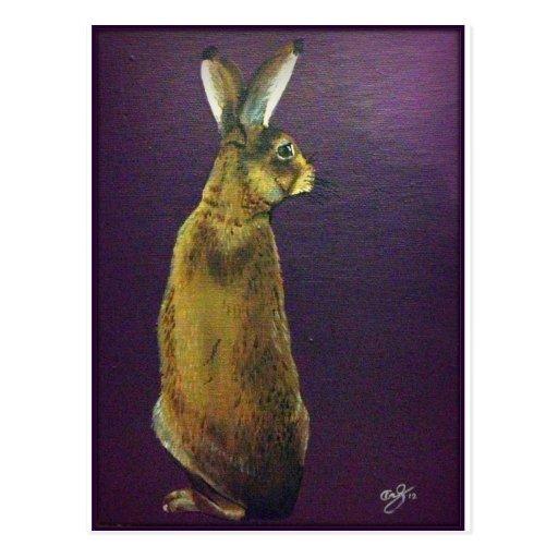 Rabbit.jpg púrpura tarjetas postales