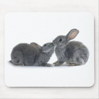 Rabbit Kiss Mouse Pad
