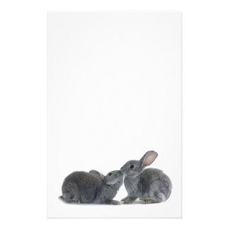 Rabbit Kiss Personalized Stationery