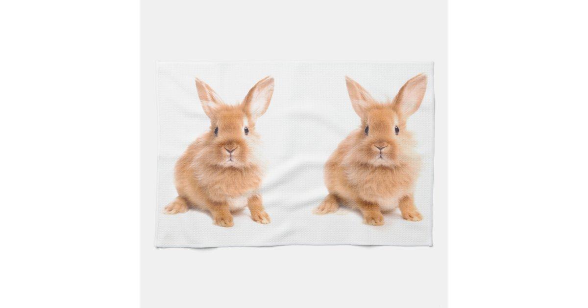 rabbit kitchen towels zazzle
