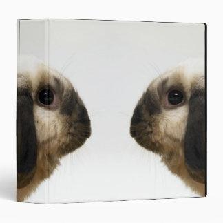 Rabbit looking at rabbit binder