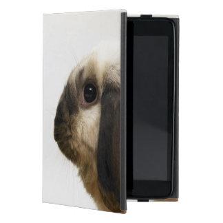 Rabbit looking at rabbit cover for iPad mini