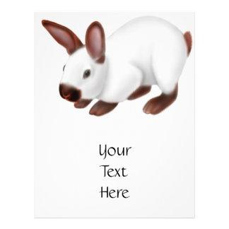 Rabbit Lovers Flyer