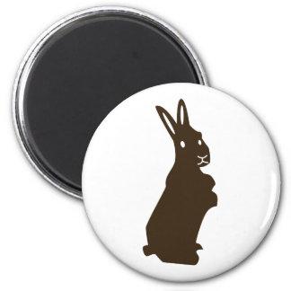 Rabbit Magnet