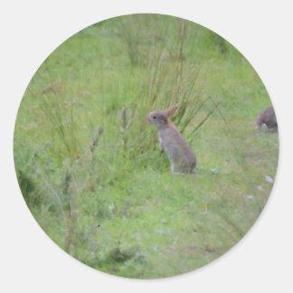 Rabbit Meadow Classic Round Sticker