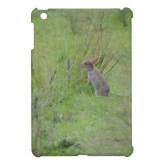Rabbit Meadow iPad Mini Cases
