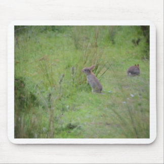 Rabbit Meadow Mouse Pad