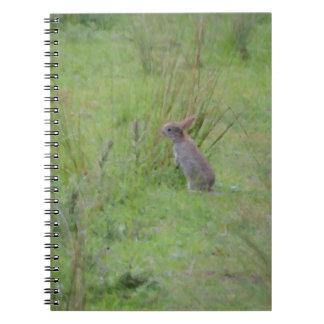 Rabbit Meadow Notebook