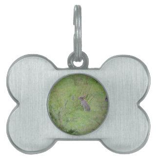 Rabbit Meadow Pet Name Tag