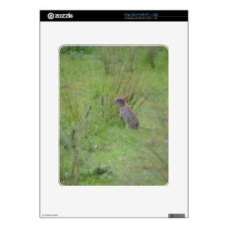 Rabbit Meadow Skins For iPad