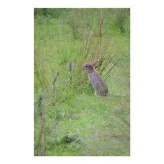 Rabbit Meadow Stationery