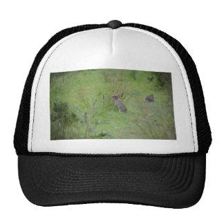 Rabbit Meadow Trucker Hat