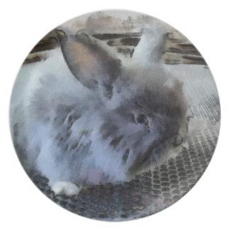 Rabbit  Melamine Plate