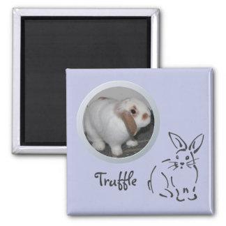 Rabbit Memory Add a Photo Magnet