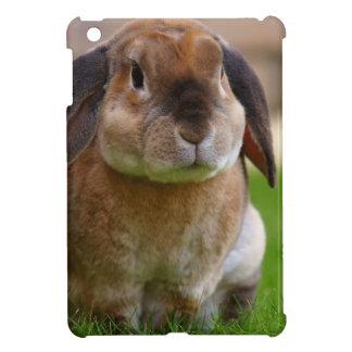 Rabbit minni lop iPad mini cases