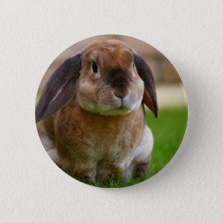 Rabbit minni lop pinback button