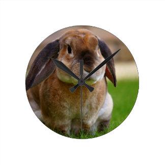 Rabbit minni lop round clock