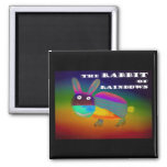 Rabbit of Rainbows [magnet]