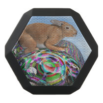 Rabbit on its colorful egg for Easter - 3D render Black Bluetooth Speaker