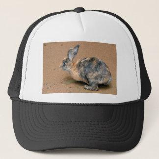 Rabbit on the ground trucker hat