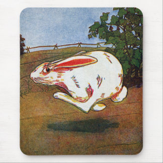 Rabbit on the Run Mouse Pad