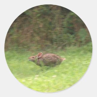 Rabbit on the Run Classic Round Sticker