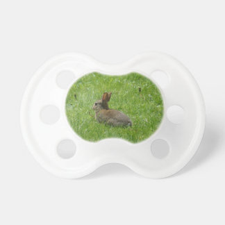 Rabbit Pacifiers