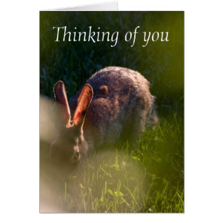 Rabbit Pet Sympathy Card